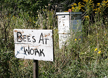 Bees at work sign