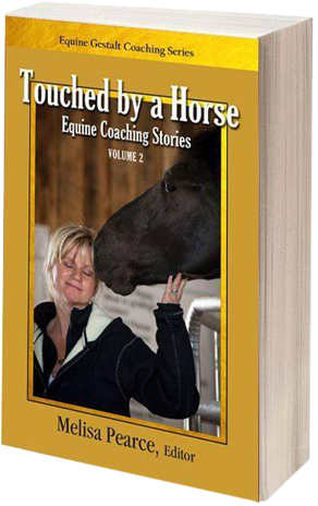 Touched by a Horse Book