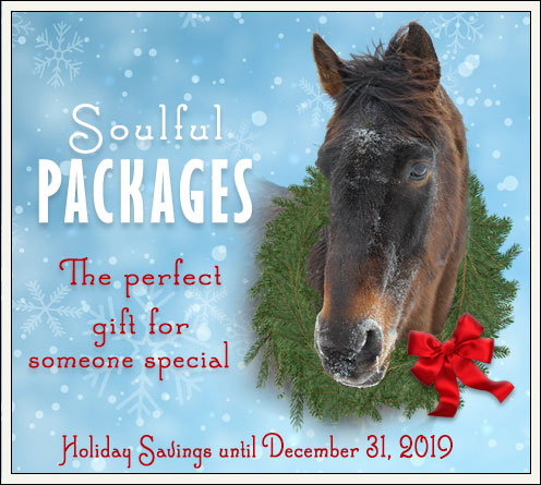 Soulful Packages for the holidays