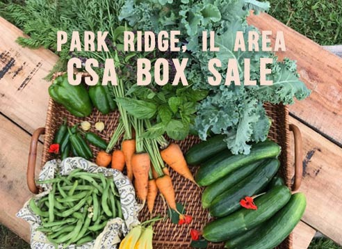 Park Ridge box sale